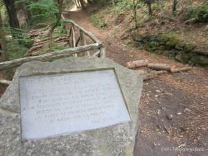 Sulla destra il sentiero usato spesso dai bracconieri. Il sentiero, dopo essersi mantenuto sulla curva di livello porta a un bivio, uno scende e l'altro porta sui Cognoli di Ottaviano