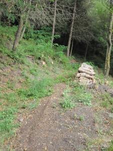 Discesa e confluenza del suddetto sentiero dei bracconieri nel n°1