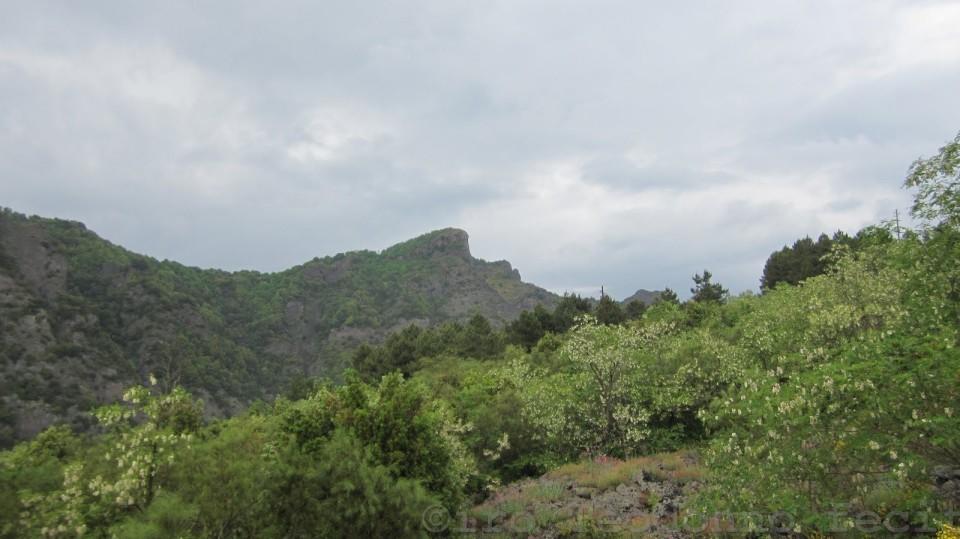 Punta Nasone dalla Provinciale