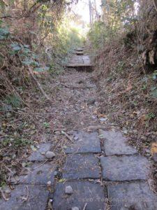 Il sentiero n°8