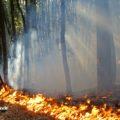 Vesuvio-fronte-di-fiamme